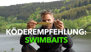 Hecht angeln Swimbait