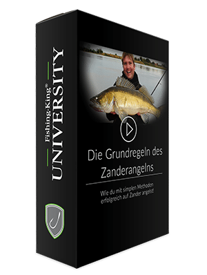 Fishing-King-University Online Videokurs Angelprofi