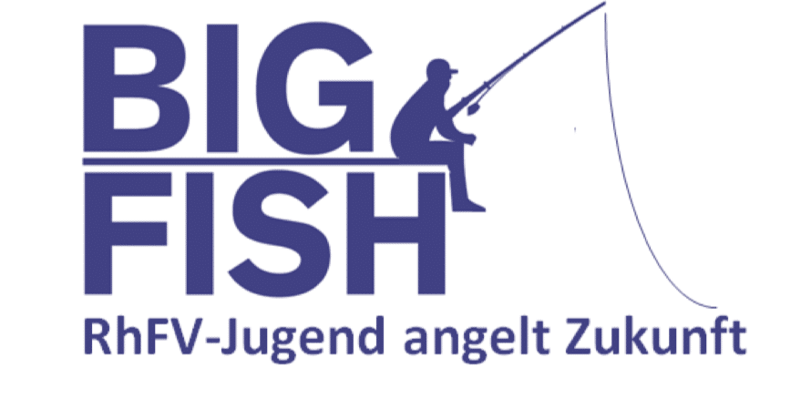 BigFish Projekt RhFV Fishing-King